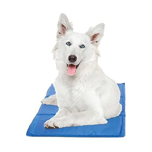 Extra Large Cool Mat for Dogs: Amazon com