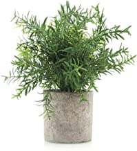 Velener Mini Potted Plastic Fake Green Plant for Home Decor (Bamboo Leaf)