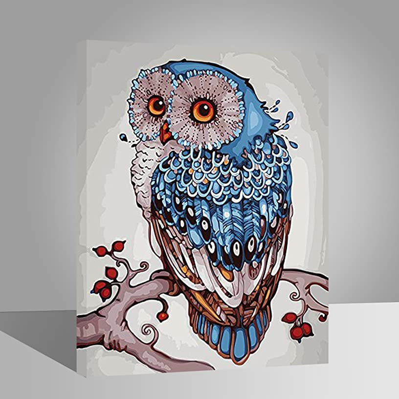 LIUDAO DIY Oil Painting on Canvas Paint by Number Kits for Kids Beginner Adults Decoration Gift -Lucky Owl(16x20 inch,Wooden Framed)