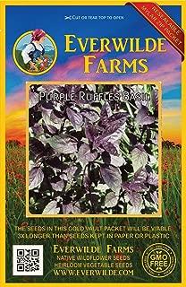Everwilde Farms - 500 Purple Ruffles Basil Herb Seeds - Gold Vault Jumbo Seed Packet