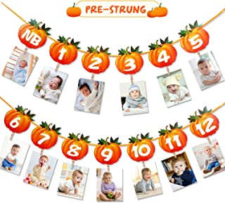 Pumpkin Theme Photo Banner 1st Birthday Monthly Banner Newborn to 12 Month Photo Display Milestone Photograph for Fall First Birthday Party Decorations Supplies