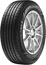 GOODYEAR ASSURANCE MAXLIFE all_ Season Radial Tire-205/55R16 91H