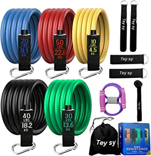 Tey sy Resistance Bands Set (12 pcs): Exercise Bands, Workout Bands, Carrying Bags, Strength Training Equipment, for Leg R...