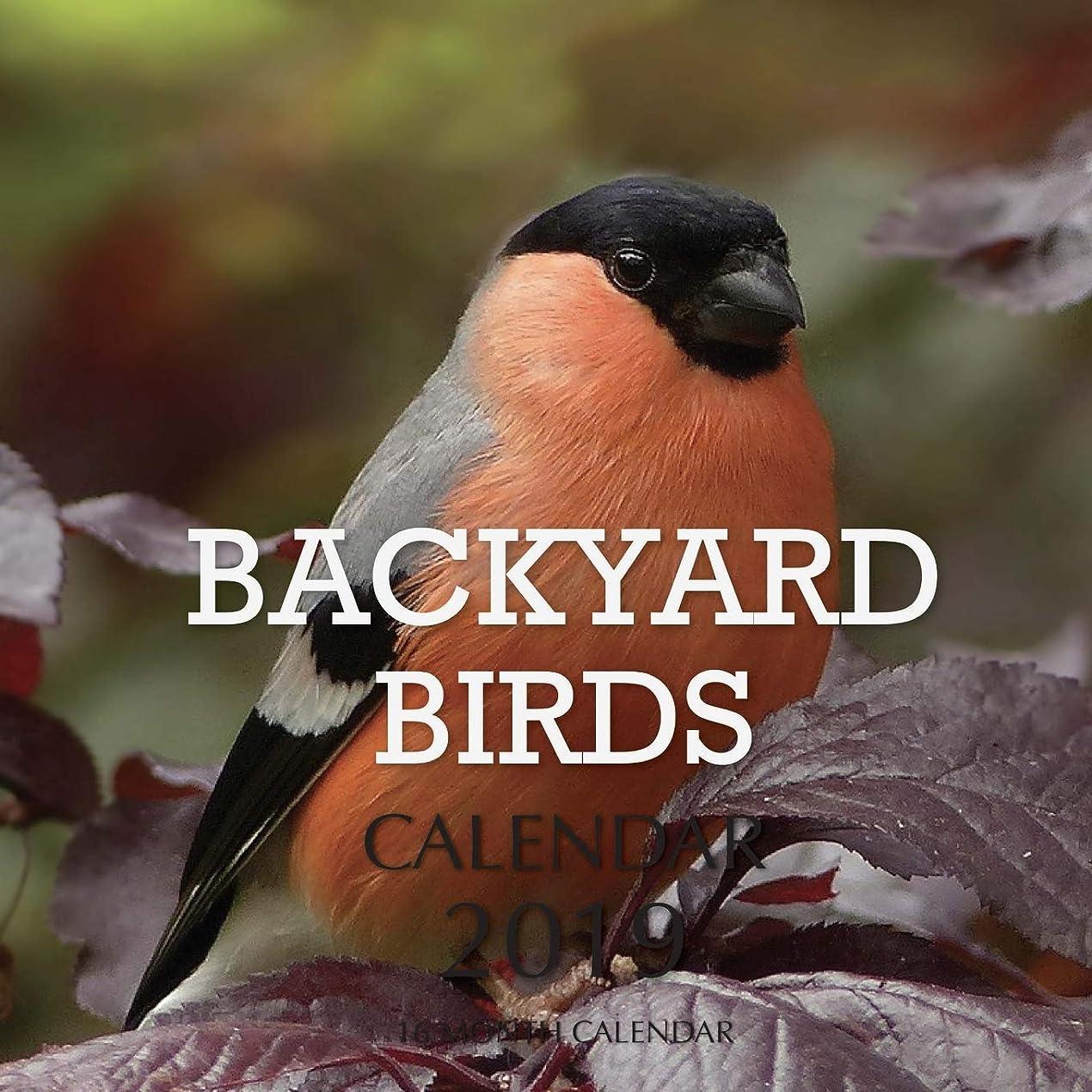 動分配します本体Backyard Birds Calendar 2019: 16 Month Calendar