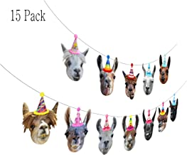Birthday Llama Garland, Funny Alpaca Face Portrait Bunting, Hilarious Bday Party Supplies and Decorations