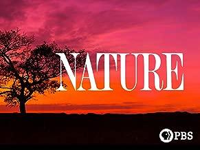 Nature: Volume 9