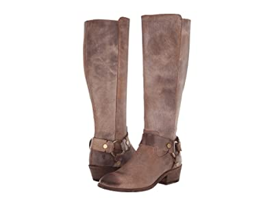 Frye Carson Harness Tall (Chocolate) Women