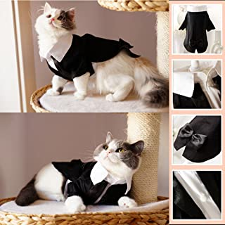 i'Pet® Handsome Prince Cat Bridegroom Wedding Tuxedo Faux Twinset Design Small Boy Dog Formal Attire Doggy Party Wear Puppy Birthday Outfit Doggie Photo Apparel with Buttons Holiday Fabric Clothes Halloween Classics Collection Costume