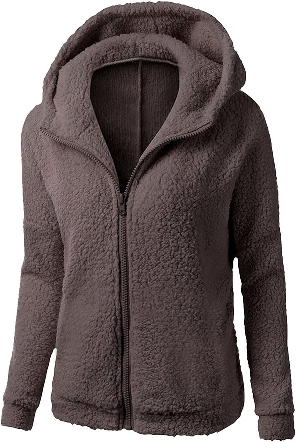 San Antonio Mall Ranking TOP5 Hooded Coat for Women Zip up Faux Warm Fas Plus Size Winter Lamb