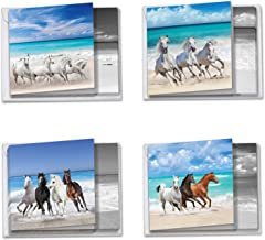 12 Beautiful 'Gallops and Greetings' Blank Boxed Note Cards 4 x 5.12 inch - Assorted Animal Greeting Cards of Wild Horses on a Beach - All Occasion Stationery Notecards w/Envelopes MQ5074OCB-B3x4
