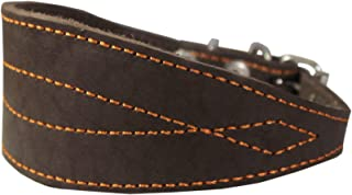 Brown Real Leather Tapered Extra Wide Greyhound Whippet Dog Collar 2.75