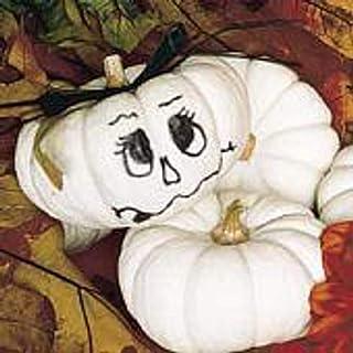 Baby Boo Pumpkins Seeds (((50 Seed Packet))) (More Heirloom, Organic, Non GMO, Vegetable, Fruit, Herb, Flower Garden Seeds...