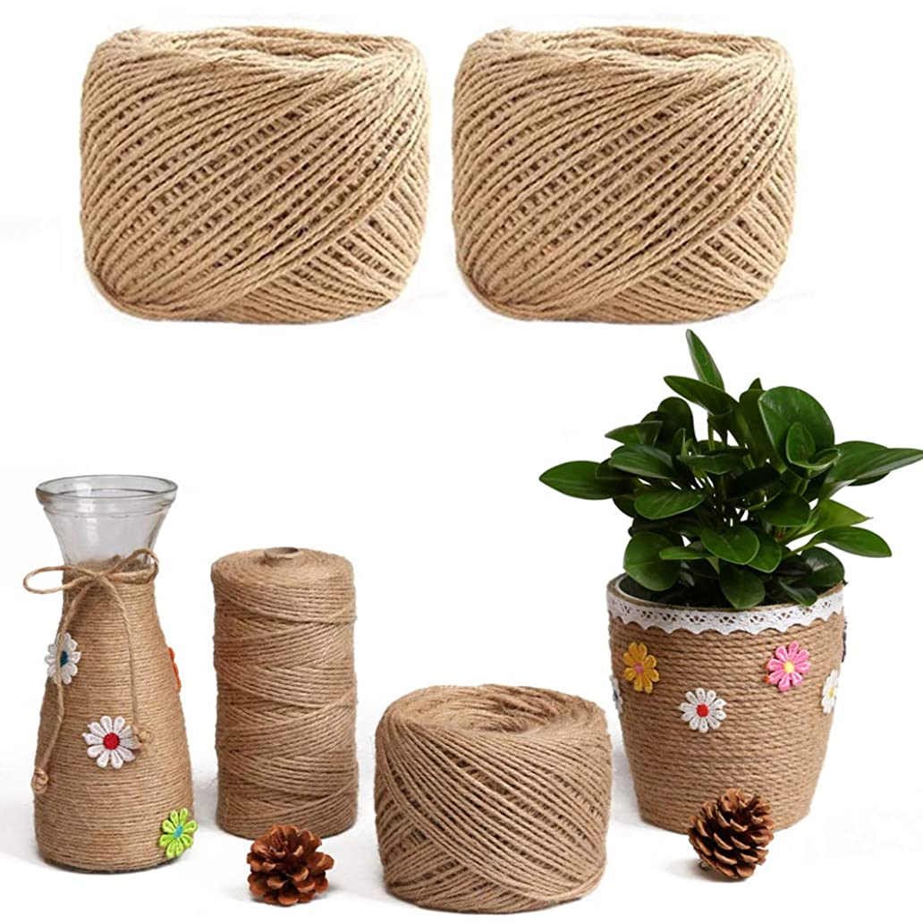Aquarius CiCi 656 Feet Natural Jute Twine Arts Crafts Jute Rope Durable Packing for DIY Crafts, Photos and Gardening Applications - 100 Meters 2 Pcs(Diameter: 3 mm) qqn3922755