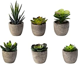 Artificial Plants for Decoration, Mini Fake Succulent Plants Ideal for Both Indoor & Outdoor, Decor Your Home & Office with Green Faux Cactus Aloe in Grey Pot, Available in Set of 6
