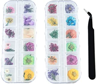 Pomeat 48 Colors Dried Flowers for Nail Art, 3D Nail Stickers Nail Supplies Dried Flowers with a Curved Tweezers