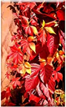 Single-Gang Blank Wall Plate Cover - Parthenocissus Leaves Red Leaves Autumn Leaf