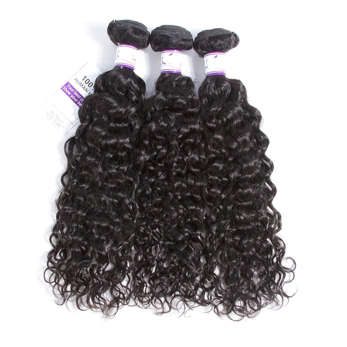 低いインド有能なマレーシア水波毛束8-28インチ100%人毛織りレミー髪ナチュラルカラー3ピース髪織り かつら (Stretched Length : 10 10 12)