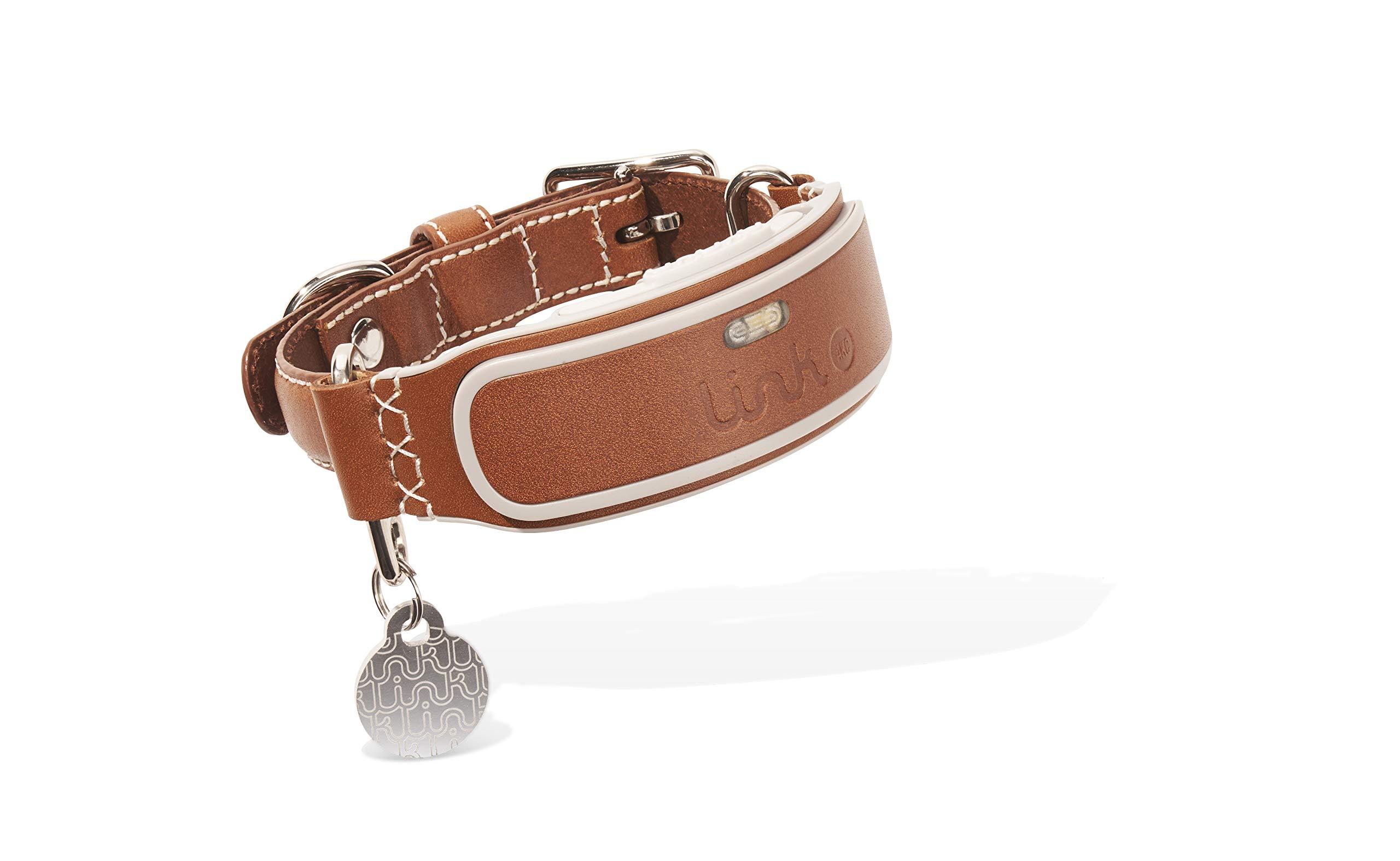 Link AKC Smart Dog Collar
