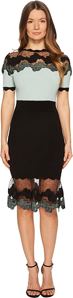 YIGAL AZROUËL Shell Lace Combo Short Sleeve Knit Dress