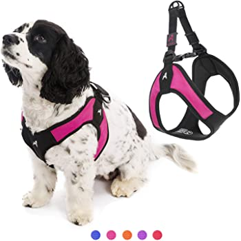 Gooby Dog Harness - Escape Free Easy Fit Patented Step-in Small Dog Harness - Perfect on The Go - No Pull Harness for Small Dogs or Cat Harness for Indoor and Outdoor Use