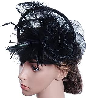 Wedding Party Hat,Wensltd Elegant Womens Feather Mesh Net Sinamay Fascinator Hat