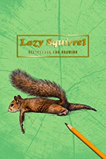 Lazy Squirrel SKETCHBOOK FOR DRAWING SKETCH BOOK FOR ARTISTS - BLANK PAGES: cool small sketch book for creative heads | pe...