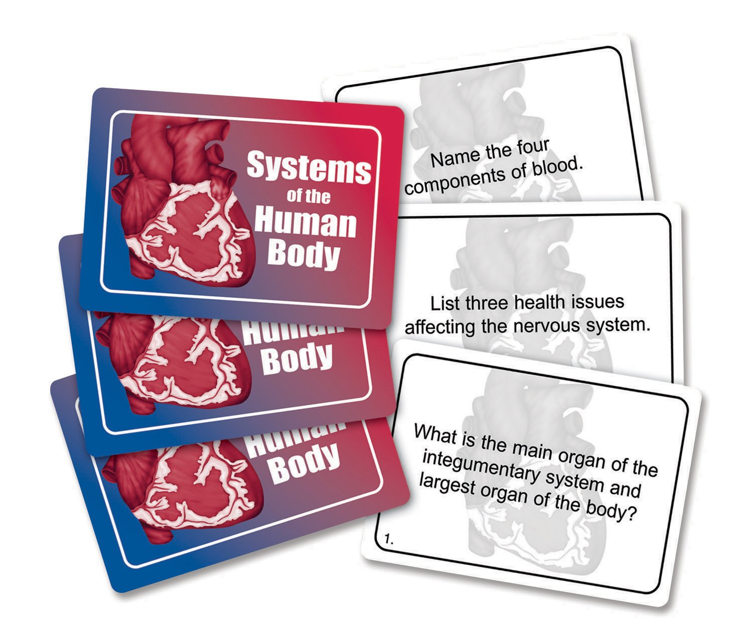 Human Body Systems Games for Kids
