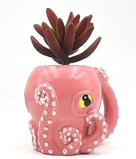 Best octopus plant flower Reviews