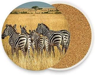 Animal Zebra Prairie Wildlife Ceramic Coaste Glass Cup Holder Coffee Mug Place Mats for Drinks Pack Of 1