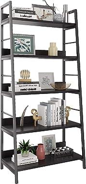 HIMIMI 5 Shelf Ladder Bookcase, Industrial Bookshelf Wood and Metal Bookshelves, Plant Flower Stand Rack Book Rack Storage Sh
