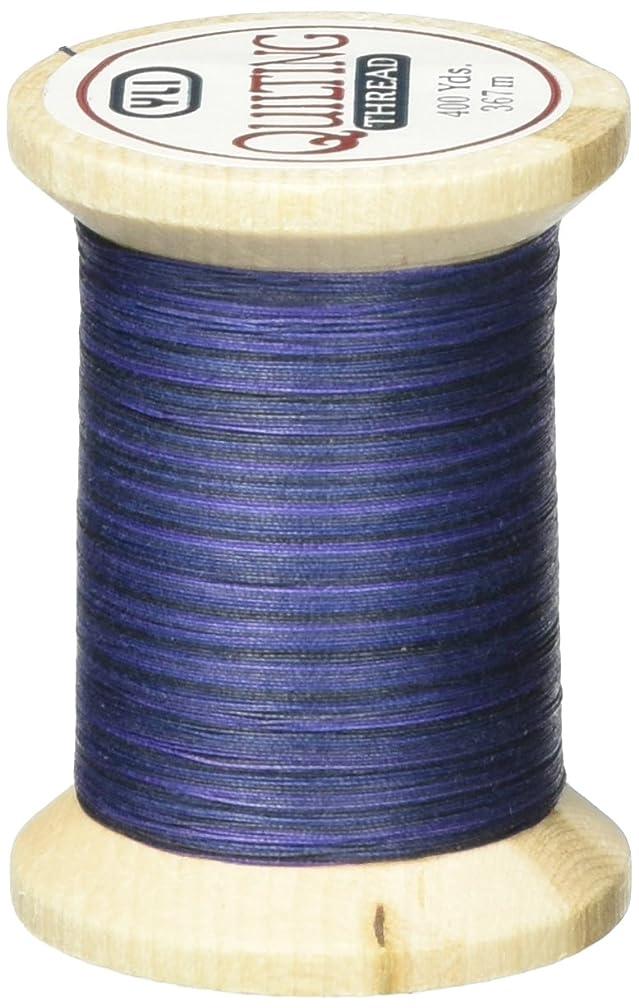 YLI 21104-V85 Variegated Cotton Hand Quilting Thread, 400 yd, Blue