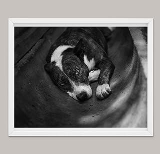 Cane Arte Foto Regali Per Gli Amanti Dei Cani, Poster Stampe Su Tela Varie Dimensioni, Pitbull Decorazione Della Parete, P...