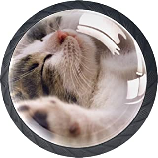 Boutons de tiroir Poignées d'armoire rondes Pull pour bureau à domicile cuisine commode armoire décorer,Chat animal