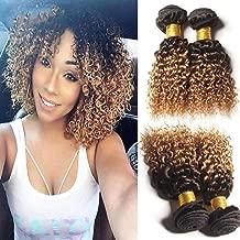 Hairitory Hair Ombre Kinky Curly Human Hair Weave, 3 Bundles 8A Peruvian Virgin Hair 2 Tone 1B/27 Dark Roots Blonde Hair Short Curly Weave Human Hair Extensions 100g/PC (10 10 10)