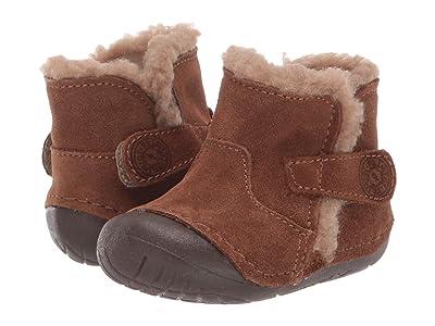 Primigi Kids PLE 44001 (Infant/Toddler) (Brown) Boy