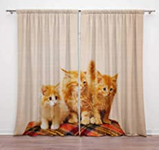 Timingila Brown Kitten Cats Animal Printed 2 Pcs Door Curtains for Bedroom Rod Pocket Window Curtain Decorative Home Acces...