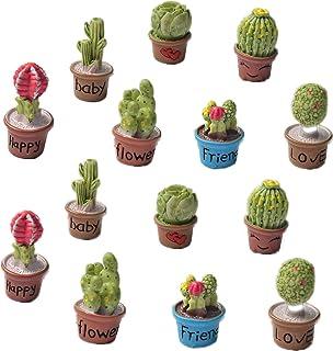 Zhiheng Set of 14 Cactus Flower Pot Succulent Plants Mini Garden Fairy Garden Kits Miniature Ornament Accessories Set for ...