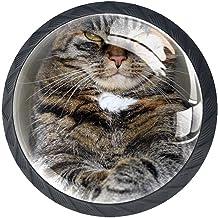 AITAI Set van 4 deurknop decoratieve handgreep kat dier elegante toevoeging voor kast lade dressoir slaapkamer