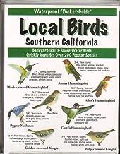 Local Birds Southern California