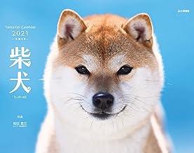 カレンダー2021 柴犬 (月めくり・壁掛け) (ヤマケイカレンダー2021)