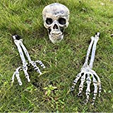 HINZER Halloween Graveyard Décor Realistic Skull Skeleton Stakes Ground Breaker - 1 Realistic Skull and 2 Forearms Prop Skeleton for Outdoor Yard Lawn Stake Halloween Decorations