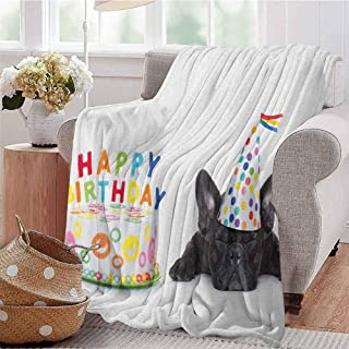 Luoiaax Kids Birthday Comfortable Large Blanket Sleepy French Bulldog Party Cake with Candles Cone Hat Celebration Image Microfiber Blanket Bed Sofa or Travel W70 x L70 Inch Multicolor