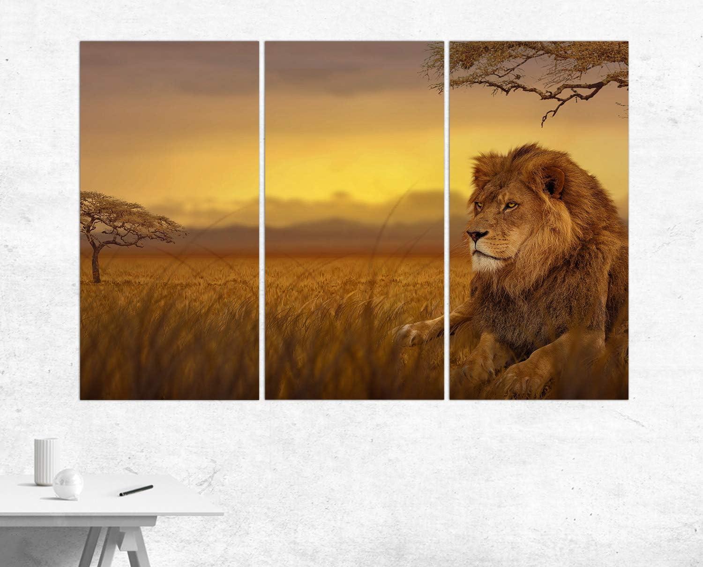 Topquadro Quadro XXL multipannello 3 Pezzi Stampa su Tela 40x120cm Decorazioni Interni Leone al Tramonto Immagine 3 Parti Savana Africa
