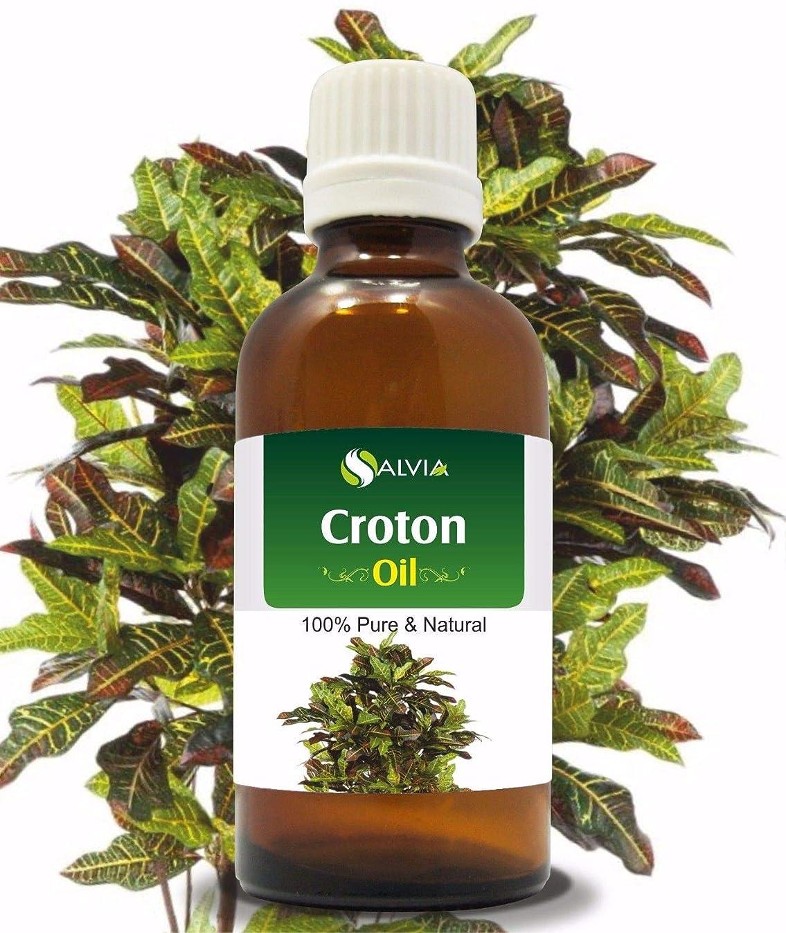 ゆり禁じる人間Croton (Crotonis Oleum) 100% Natural Pure Carrier Oil 30ml