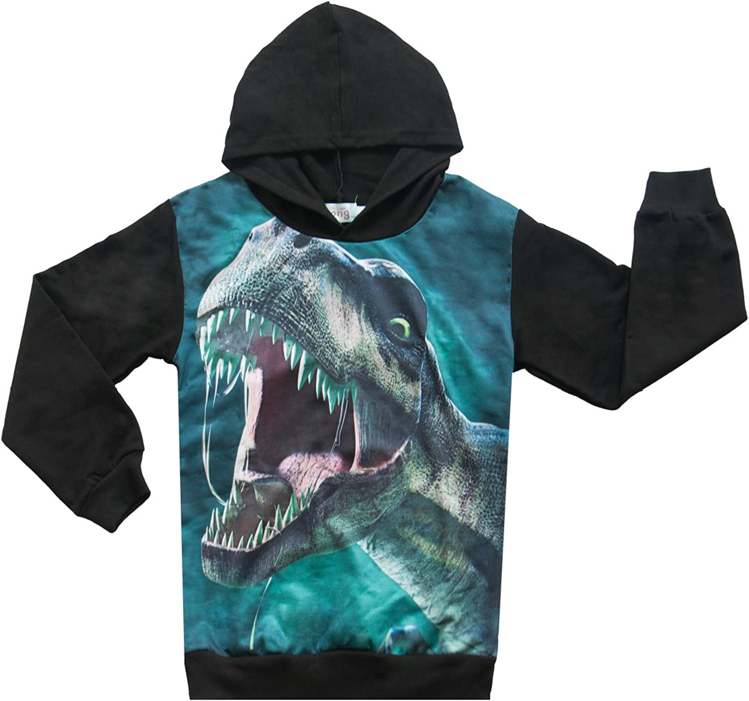 Boys Hoodies Dinosaur Sweatshirts Pullover Toddler Casual Long Sleeve T-Shirts Tops for 4-9 Years