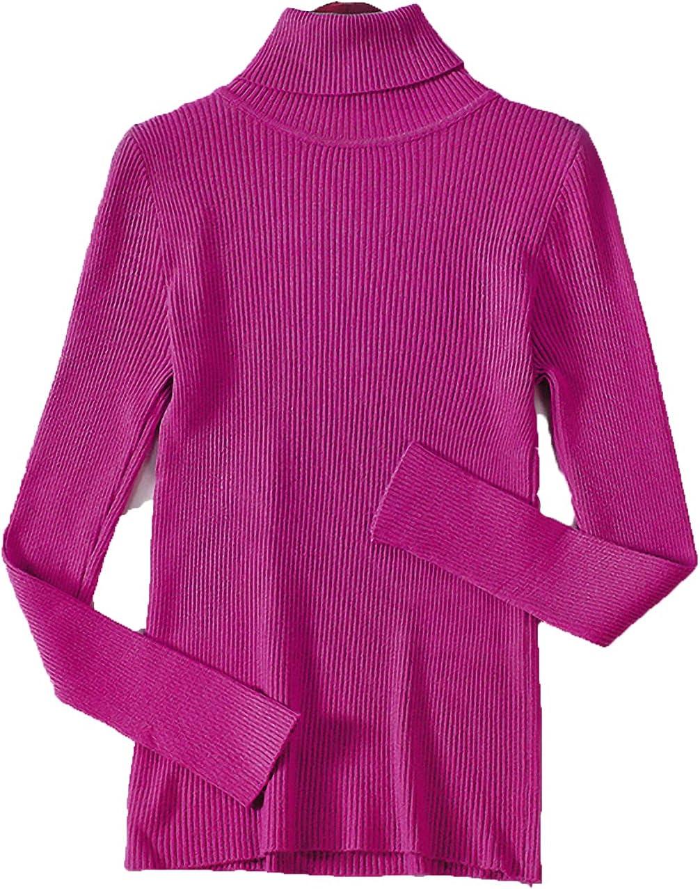Basic Turtleneck Women Sweaters Autumn Winter Tops Slim Women Pullover Knitted Sweater Jumper Soft Warm Pull