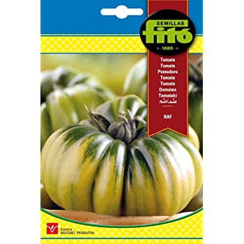 Semillas Fitó 6235 - Semillas de Tomate Marmande RAF: Amazon.es ...