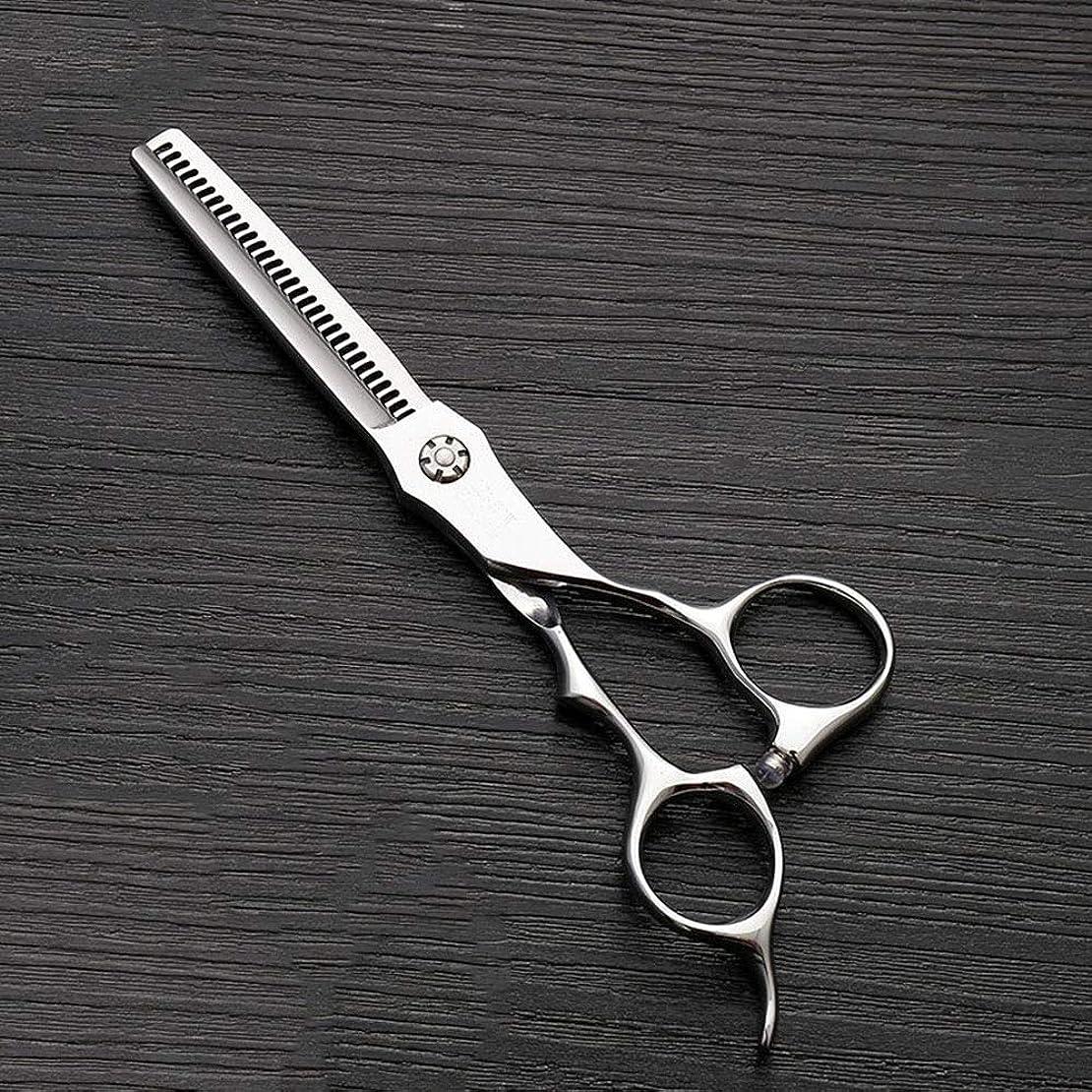 到着慎重に不屈6インチのステンレス鋼の歯のせん断の薄くする理髪はさみ、美容院の特別なはさみ モデリングツール (色 : Silver)