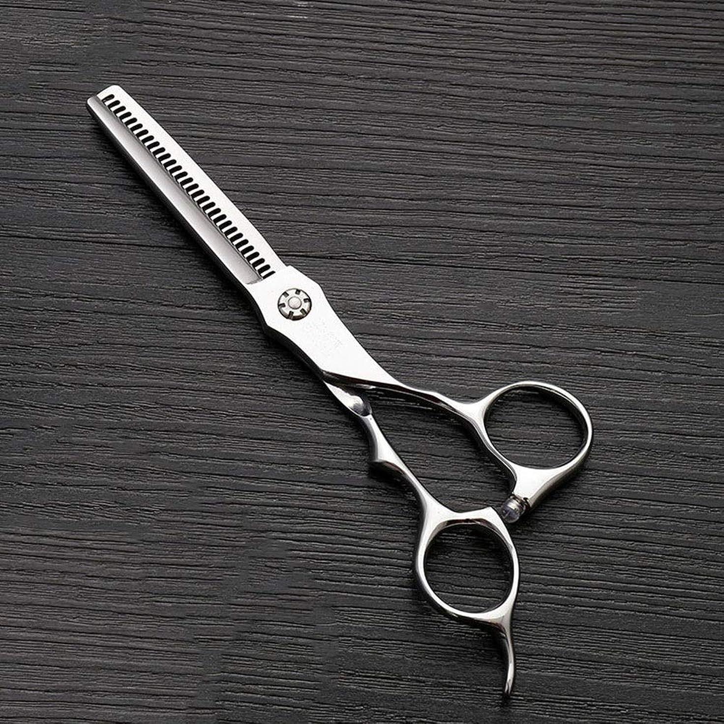 不道徳説教神経障害6インチのステンレス鋼の歯のせん断の薄くする理髪はさみ、美容院の特別なはさみ モデリングツール (色 : Silver)