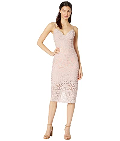 Bardot Gia Lace Dress (Latte Pink) Women
